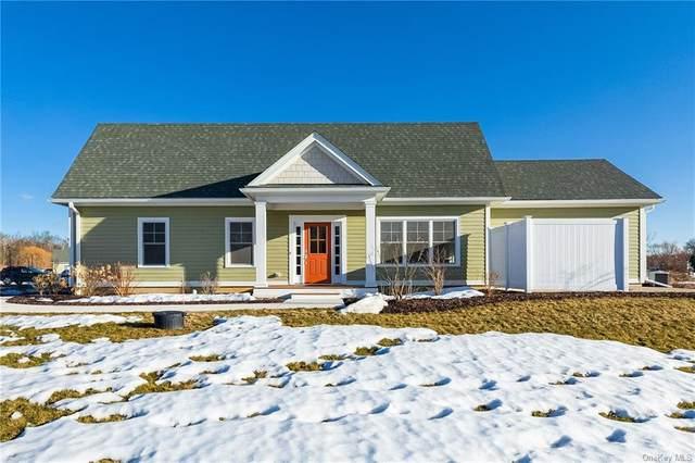 23 Oakwood Lane, Rhinebeck, NY 12572 (MLS #H6100333) :: Signature Premier Properties