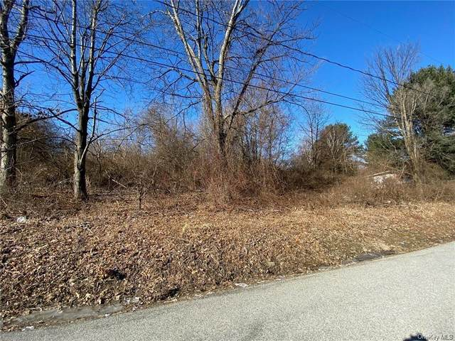 Wyms Heights Road, Marlboro, NY 12542 (MLS #H6100389) :: Barbara Carter Team