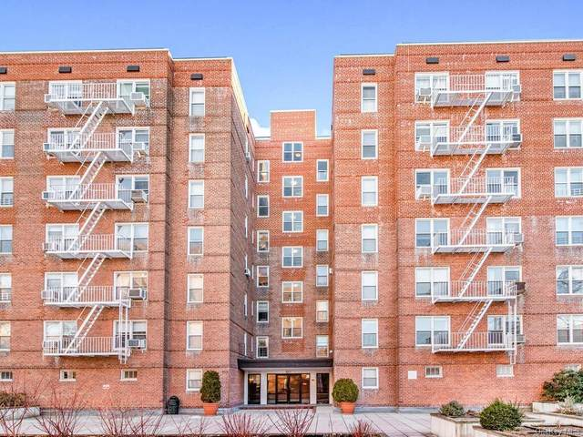 517 Riverdale Avenue 4B/5B, Yonkers, NY 10705 (MLS #H6100758) :: RE/MAX RoNIN