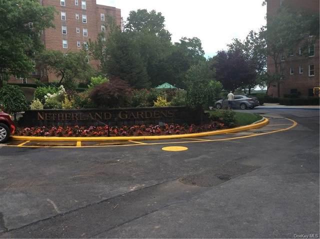 5621 Netherland Avenue 3D, Bronx, NY 10471 (MLS #H6100791) :: Carollo Real Estate