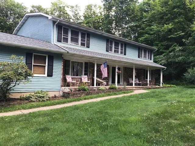 115 Roselawn Road, Highland Mills, NY 10930 (MLS #H6100936) :: Corcoran Baer & McIntosh