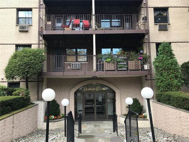 2261 Palmer Avenue 2G, New Rochelle, NY 10801 (MLS #H6101463) :: Howard Hanna | Rand Realty