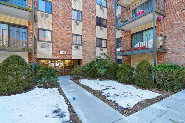 111 Dehaven Drive #227, Yonkers, NY 10703 (MLS #H6101549) :: Barbara Carter Team