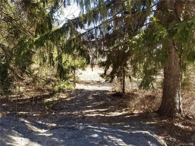 312 Church Road, Pine Bush, NY 12566 (MLS #H6101556) :: Cronin & Company Real Estate