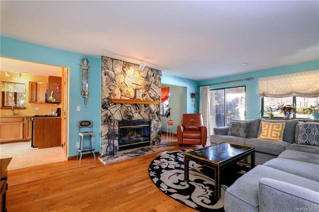 641 Panorama Drive, Mohegan Lake, NY 10547 (MLS #H6101575) :: Barbara Carter Team