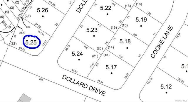 Dollard Drive, Monticello, NY 12701 (MLS #H6101659) :: Cronin & Company Real Estate