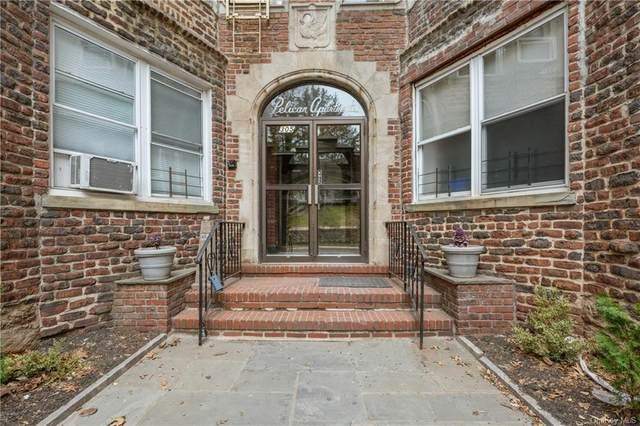 305 Sixth Avenue 1B, Pelham, NY 10803 (MLS #H6102129) :: RE/MAX RoNIN