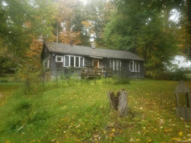 117 Spook Hole Road, Ellenville, NY 12428 (MLS #H6102287) :: Cronin & Company Real Estate