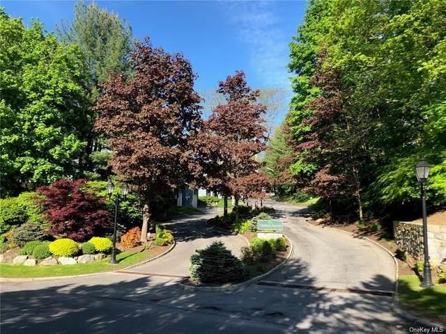 46 Timber Ridge, Mount Kisco, NY 10549 (MLS #H6102515) :: Mark Boyland Real Estate Team