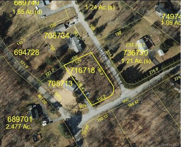 4 Wolz Road, Hopewell Junction, NY 12533 (MLS #H6102703) :: The Home Team