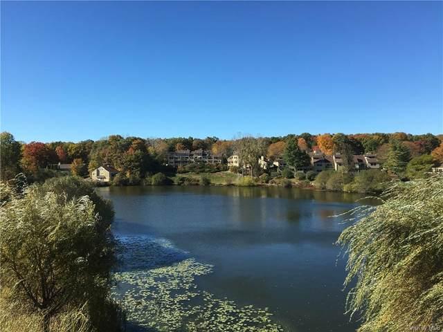 319 Overlook Court, South Salem, NY 10590 (MLS #H6102823) :: Mark Boyland Real Estate Team