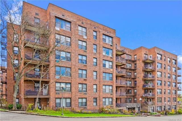121 S Highland Avenue 6J, Ossining, NY 10562 (MLS #H6103071) :: Carollo Real Estate