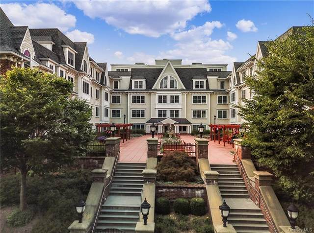 225 Stanley Avenue #315, Mamaroneck, NY 10543 (MLS #H6103093) :: Barbara Carter Team