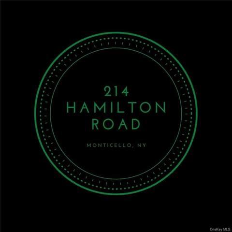 214 Hamilton Road, Monticello, NY 12701 (MLS #H6103170) :: Cronin & Company Real Estate