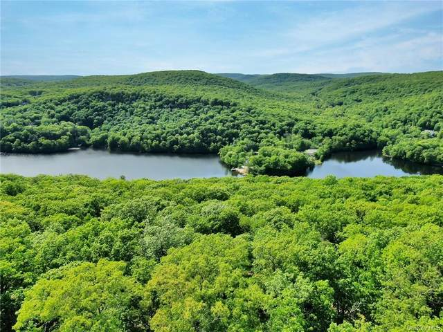 Lookout Mountain Road, Tuxedo Park, NY 10987 (MLS #H6103231) :: Corcoran Baer & McIntosh