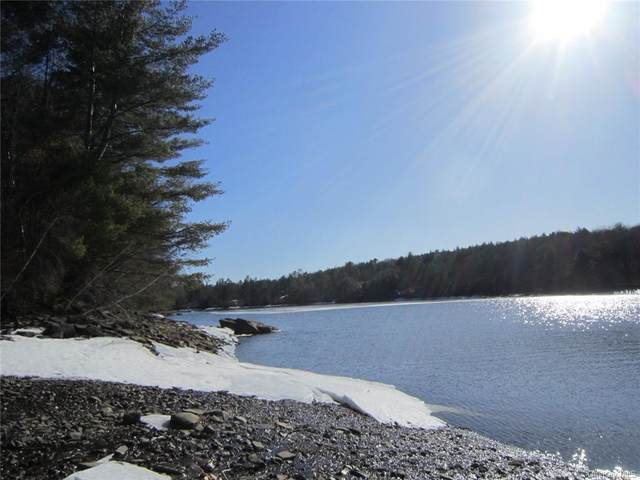 Plank Road, Forestburgh, NY 12777 (MLS #H6103327) :: RE/MAX RoNIN