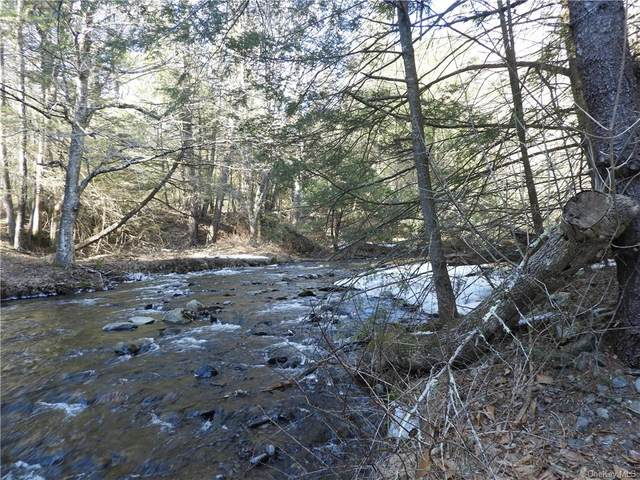Lower Lumber Road, Glen Spey, NY 12737 (MLS #H6103470) :: Signature Premier Properties