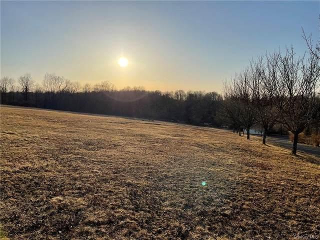 County Route 17, Thompson Ridge, NY 12566 (MLS #H6103483) :: Signature Premier Properties