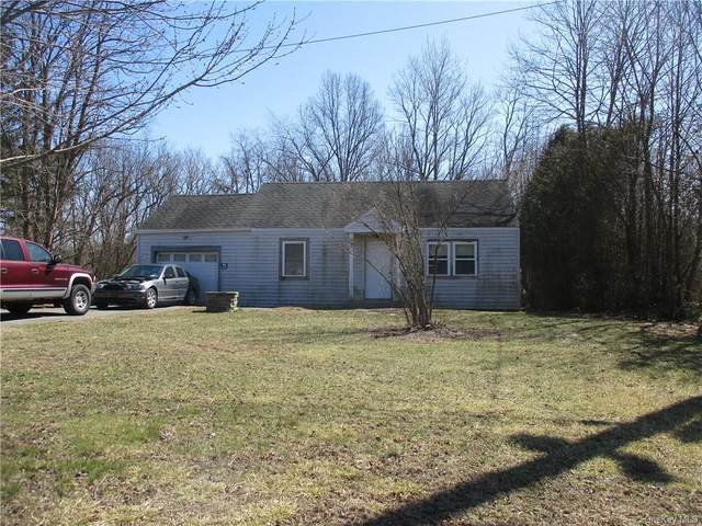 3036 Route 6, Slate Hill, NY 10973 (MLS #H6103573) :: Cronin & Company Real Estate