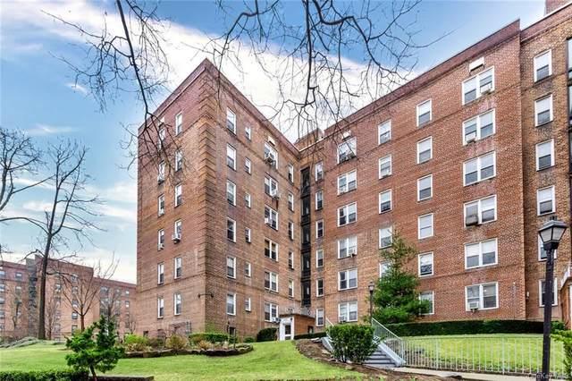5615 Netherland Avenue 3G, Bronx, NY 10471 (MLS #H6103649) :: Carollo Real Estate