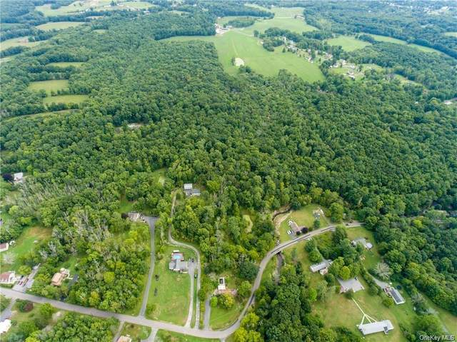 226 Ulsterville Road, Pine Bush, NY 12566 (MLS #H6103668) :: Cronin & Company Real Estate