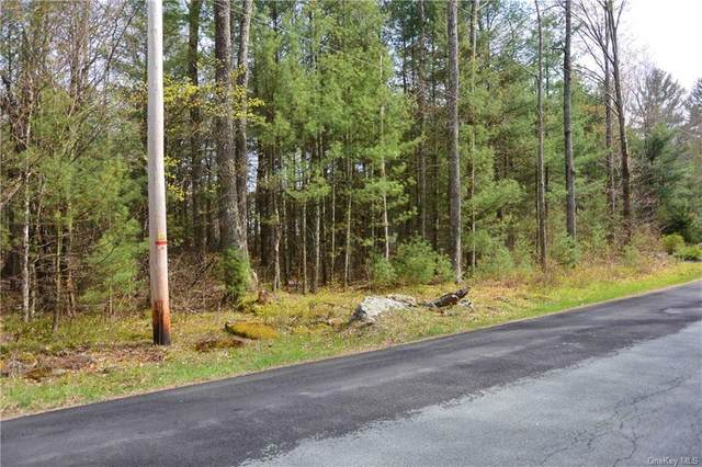 Dill Rd Road, Forestburgh, NY 12777 (MLS #H6103722) :: RE/MAX RoNIN