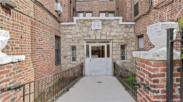 463 E 178th Street 5B, Bronx, NY 10457 (MLS #H6103736) :: Howard Hanna Rand Realty
