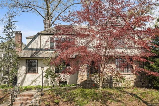 53 Palmer Avenue, Mount Vernon, NY 10552 (MLS #H6103752) :: Signature Premier Properties