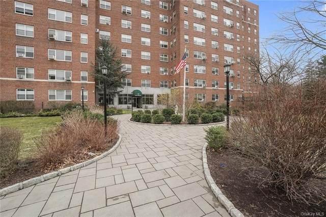 900 Palmer Road 8L, Bronxville, NY 10708 (MLS #H6103818) :: Shalini Schetty Team