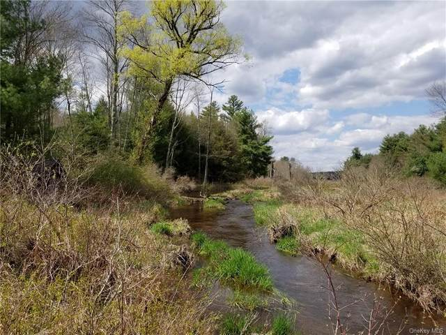 Sgt. Andrew Brucher And Rt. 17B, Smallwood, NY 12778 (MLS #H6103931) :: Signature Premier Properties
