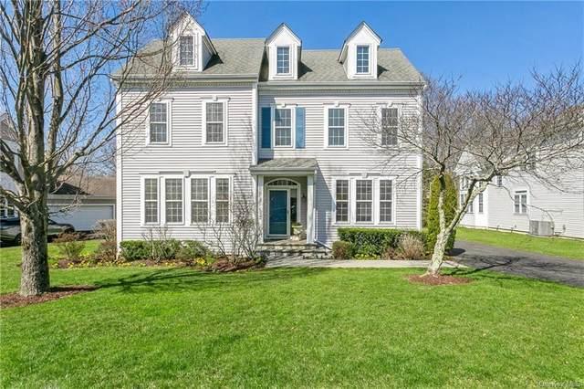 73 Bellefair Road, Rye Brook, NY 10573 (MLS #H6104092) :: Carollo Real Estate