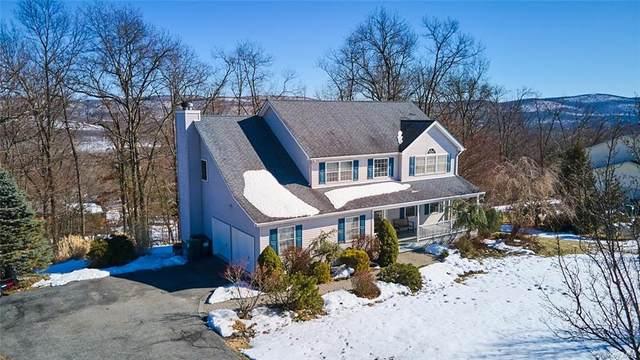 16 Dartmouth Road, Highland Mills, NY 10930 (MLS #H6104310) :: Signature Premier Properties