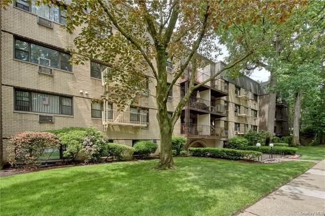 2241 Palmer Avenue 2M, New Rochelle, NY 10801 (MLS #H6104399) :: Carollo Real Estate