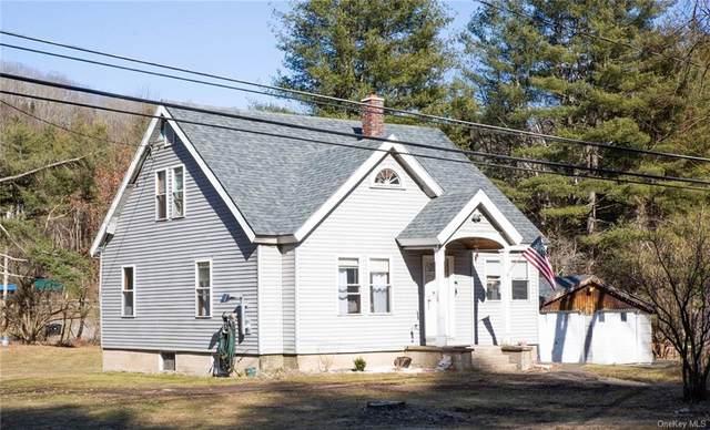 42 County Road 94, Hankins, NY 12741 (MLS #H6104486) :: Barbara Carter Team