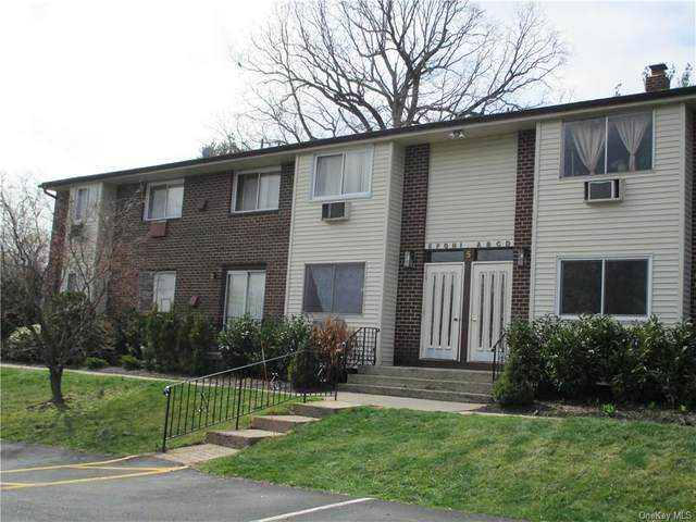 5 Blue Hill Commons Drive F, Orangeburg, NY 10962 (MLS #H6104631) :: Corcoran Baer & McIntosh