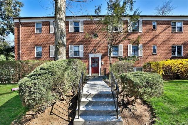 2266 Palmer Avenue 6I, New Rochelle, NY 10801 (MLS #H6104891) :: Frank Schiavone with William Raveis Real Estate