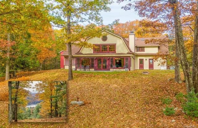 95 Harmati Lane, Bearsville, NY 12498 (MLS #H6105107) :: Carollo Real Estate