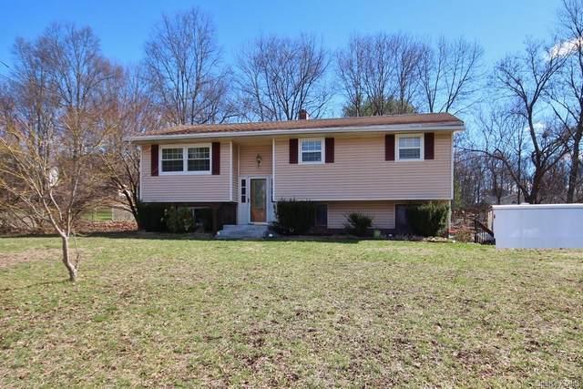 14 Buttermilk Drive, Poughkeepsie, NY 12601 (MLS #H6105149) :: Barbara Carter Team