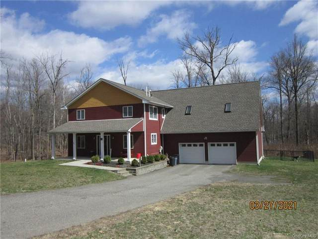 451 Maple Hill Drive, Mountainville, NY 10953 (MLS #H6105153) :: Barbara Carter Team