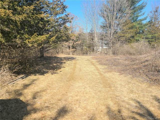 Route 82, Millbrook, NY 12514 (MLS #H6105234) :: Signature Premier Properties