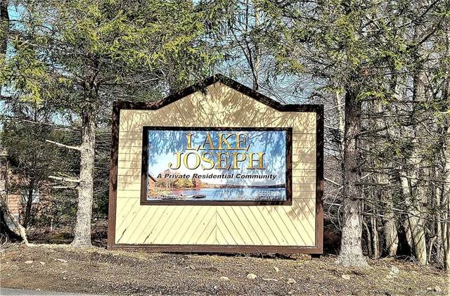 Lake Joseph Drive, Forestburgh, NY 12777 (MLS #H6105284) :: RE/MAX RoNIN