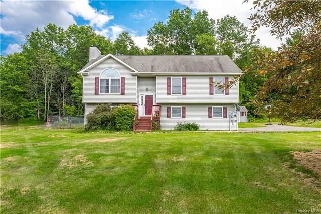 236 Long Lane, Bloomingburg, NY 12721 (MLS #H6105300) :: Kendall Group Real Estate   Keller Williams