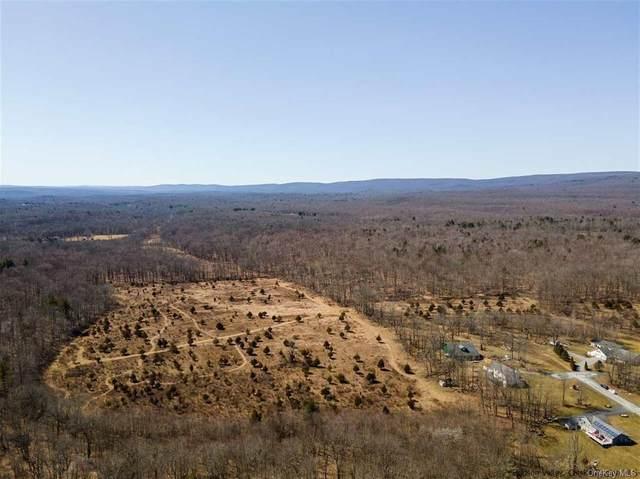 Benjamin Van Keuren Drive, Pine Bush, NY 12566 (MLS #H6105323) :: Cronin & Company Real Estate