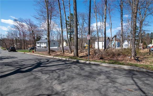 20 Gillis Avenue, Nyack, NY 10960 (MLS #H6105359) :: RE/MAX RoNIN