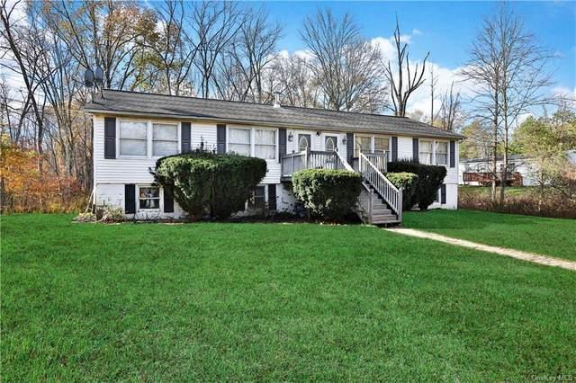 1228 Albany Post Road, Gardiner, NY 12525 (MLS #H6105456) :: Cronin & Company Real Estate