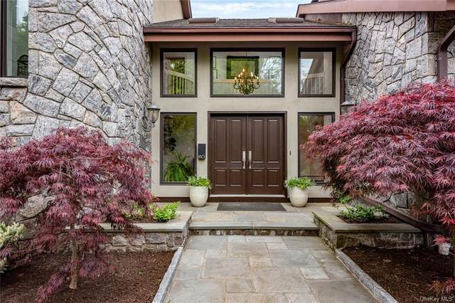 180 Washington Avenue, Dobbs Ferry, NY 10522 (MLS #H6105540) :: Corcoran Baer & McIntosh