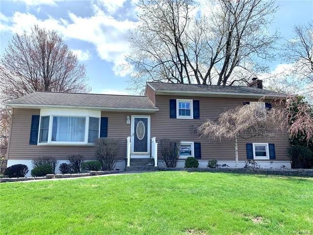 14 Estate Boulevard, Newburgh, NY 12550 (MLS #H6105562) :: Barbara Carter Team