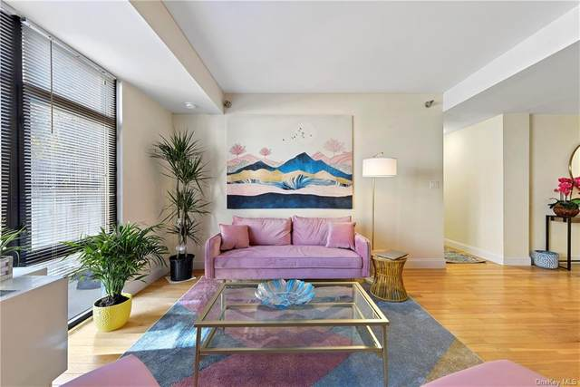 3536 Cambridge Avenue 3C, Bronx, NY 10463 (MLS #H6105675) :: Barbara Carter Team