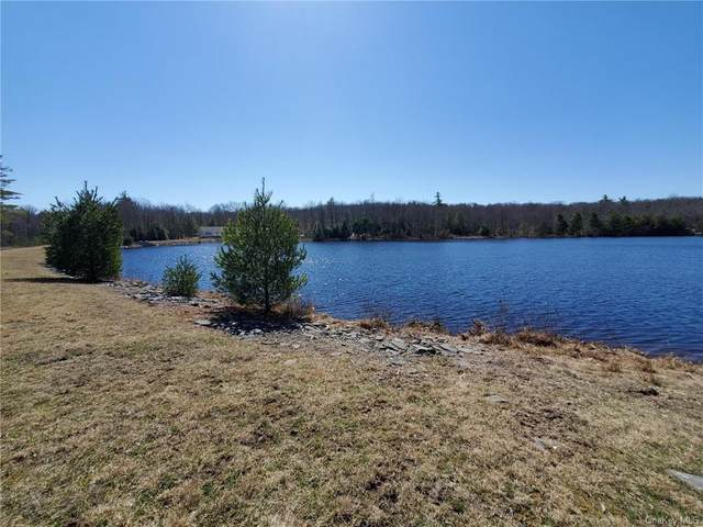 Pine Lake Drive, Wurtsboro, NY 12790 (MLS #H6105703) :: Mark Boyland Real Estate Team