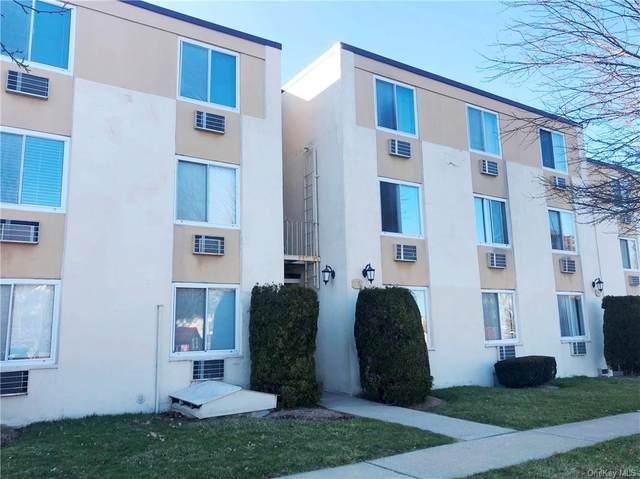 141 E Lake Boulevard E1, Mahopac, NY 10541 (MLS #H6105854) :: Barbara Carter Team